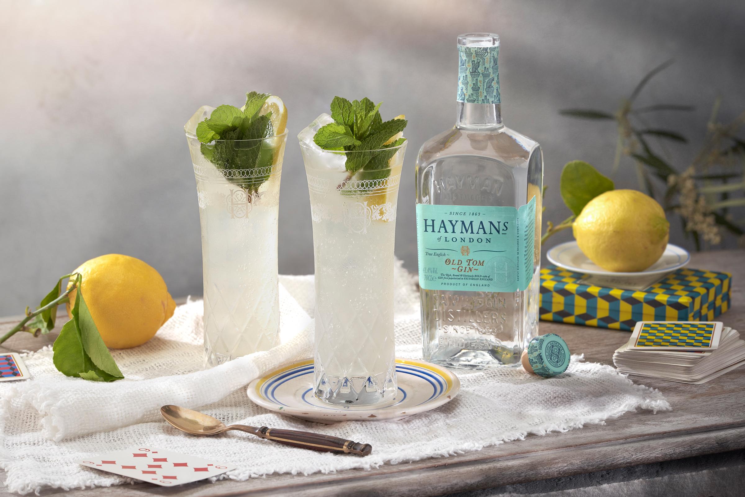 Hayman's Old Tom and Lemon Tonic