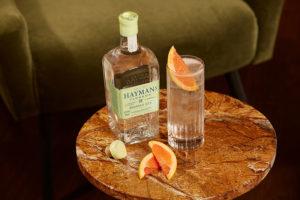 Hayman's Hopped gin and tonic