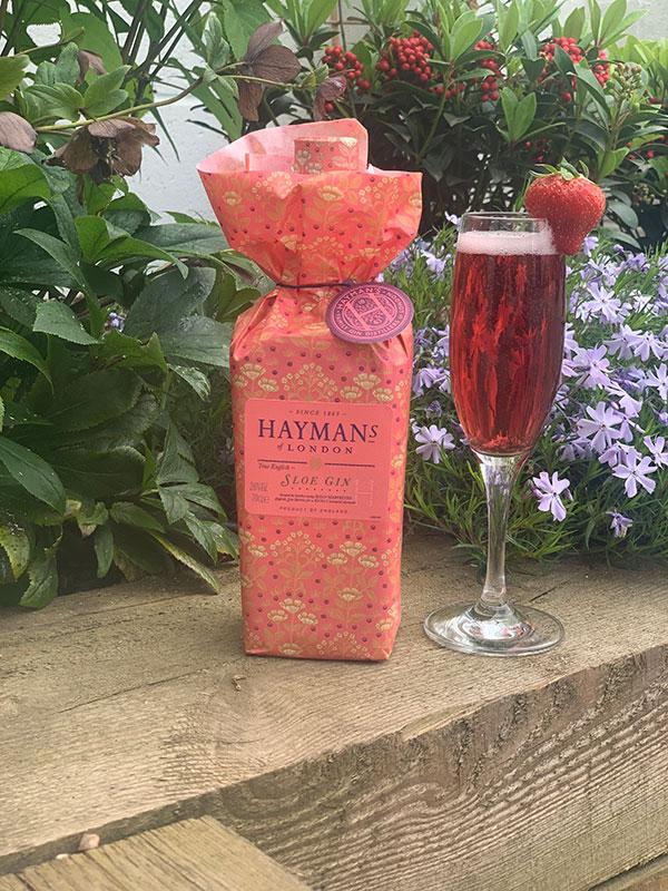Hayman's Sloe Gin Sloe Royale