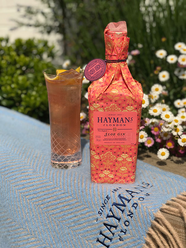 Hayman's Sloe Gin Sloe and Elderflower Spritz