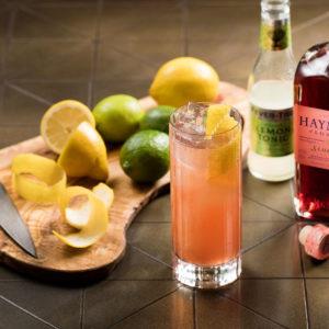 Hayman's Sloe Gin with Sloe Gin cooler