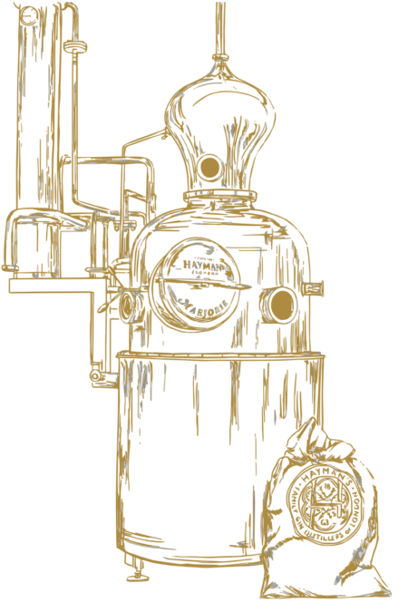 Hayman's distillery icon
