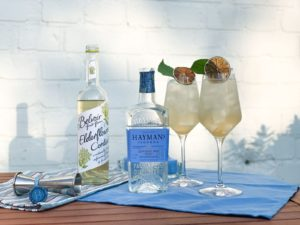 Hayman's Gin Jewel Cocktail