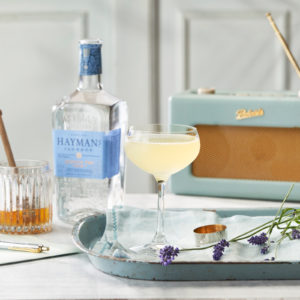 Hayman's London Dry Bees Knees