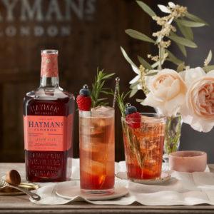 Hayman's Sloe and Elderflower tonic -001