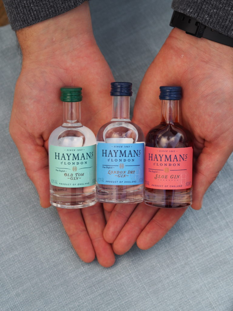 Minature Hayman's